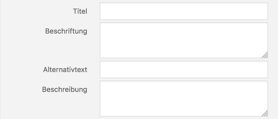 Eingabefelder für den Media-Upload bei WordPress. Wichtig: der Alt-Text